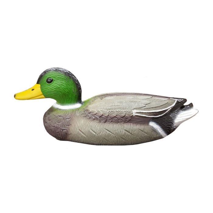 Pato cuello verde