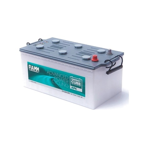 Batería Fiamm 220Ah 12V
